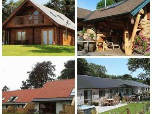 Accessible cottages and cabins